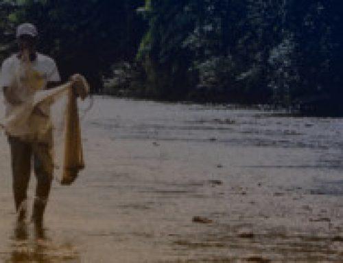 Asociación de productores agroecológicos del pantano de arce Subachoque
