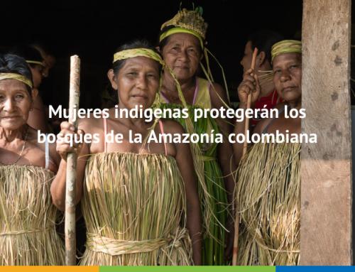 Mujeres indígenas, velarán por el cuidado de los bosques