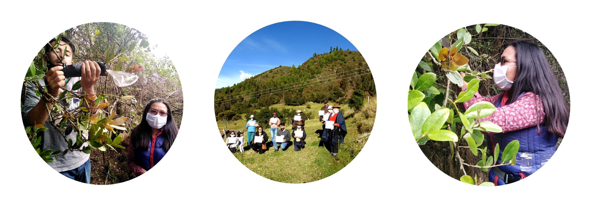 Grupo comunitario Asociación Ecológica de Producción de Frutos Andinos