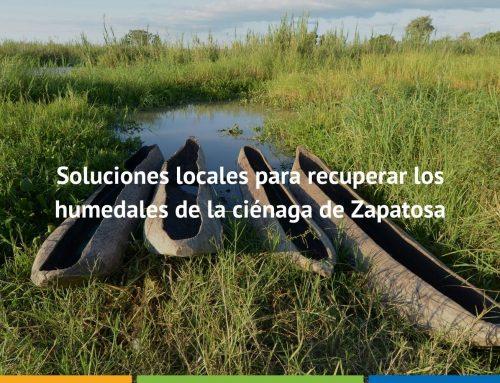 Soluciones locales para recuperar los humedales de la ciénaga de Zapatosa
