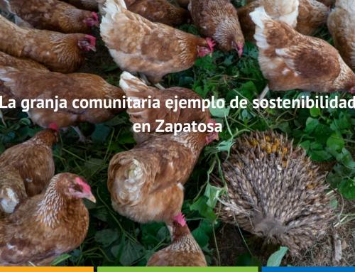 La granja comunitaria ejemplo de sostenibilidad en Zapatosa